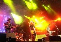 فرقة هوبا هوبا، الصورة: دافيد زيبرت
