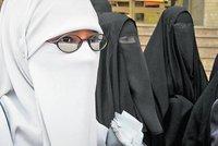 طالبات منقبات في القاهرة، الصورة د ب ا
