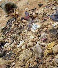 في البحث عن المقابر الجماعية في عهد صدام