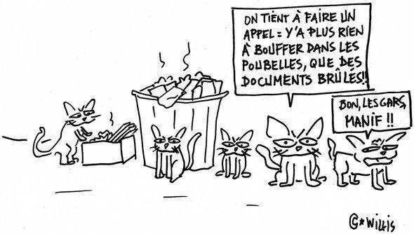 cartoon. Willis from Tunis