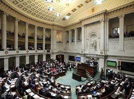 حظر البرقع، البرلمان البلجيكي