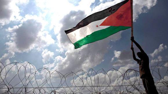 A young man waving the Palestinian national flag