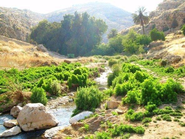 وادي القلط. ويكيبيديا