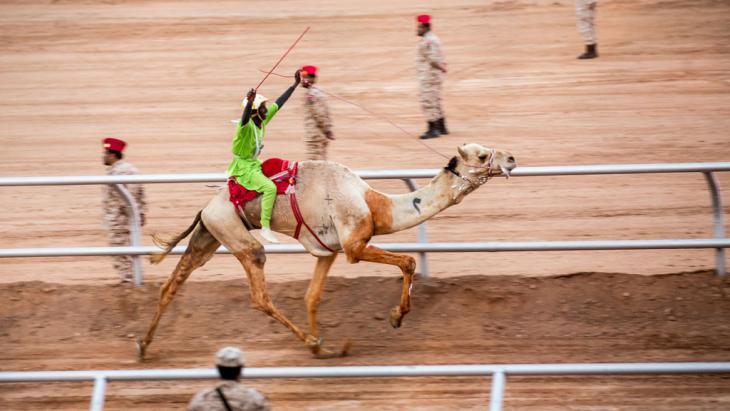 الفائز بسباق الهجن السنوي في العاصمة السعودية الرياض أثناء فعاليات مهرجان الجنادرية. Foto: Michael Kappeler/dpa