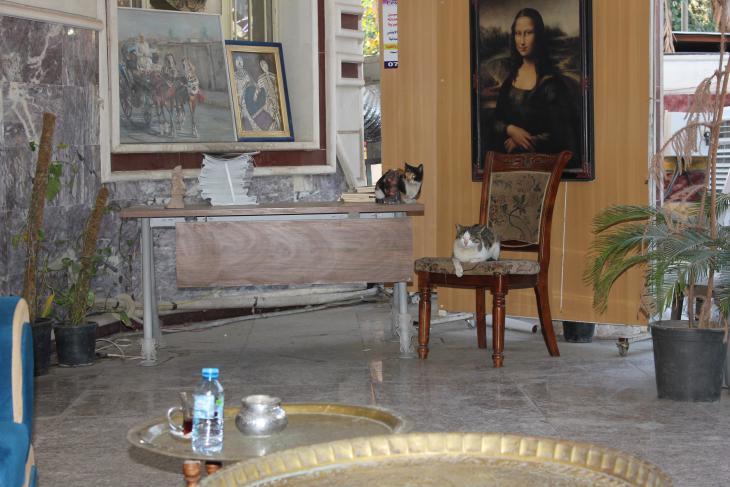 قاعة رسومات ولوحات في مقهى نازك الملائكة الثقافي. الصورة: ملهم الملائكة. Nazik Al MAlaika Cafe