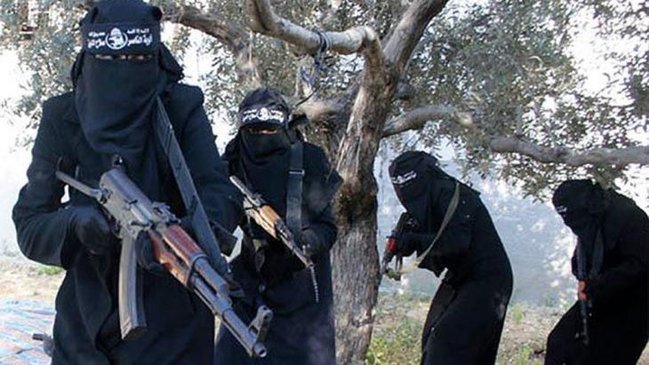 نساء منقبات ومسلحات بالبنادق.  (photo: dpa/picture-alliance/SyriaDeeply.org)