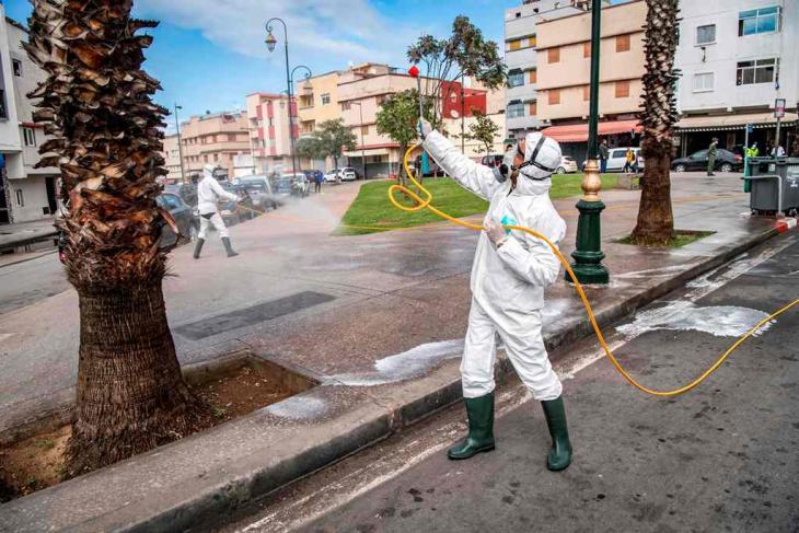 عامل في وزارة الصحة المغربية يعقم أشجارا في العاصمة المغربية الرباط، في 22 مارس 2020