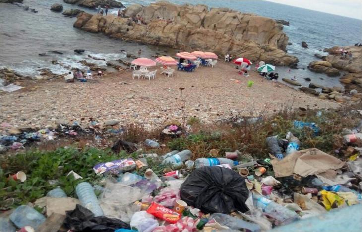 تقوم جمعية هوم البيئية، ومقرها محافظة تيبازة في الجزائر، بتنظيف السواحل والبحر. Foto: Samia Balistrou