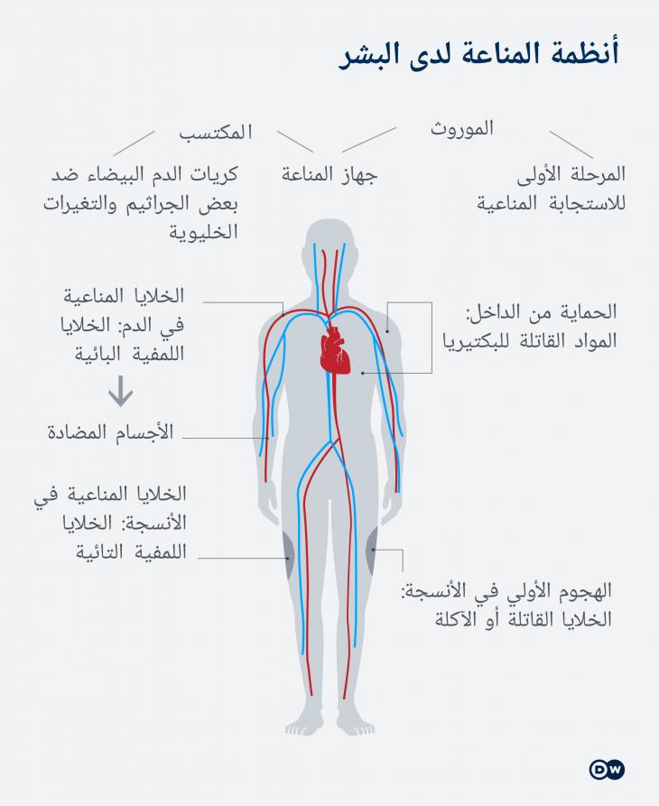 دراسة حول جائحة كورونا الموجة الثانية الإصابة بكورونا لا تعني بالضرورة اكتساب مناعة Qantara De
