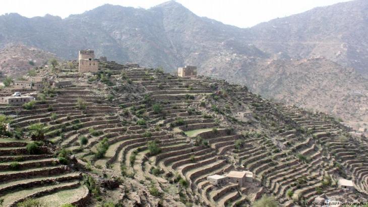حقول جبلية ومدرَّجات زراعية في اليمن