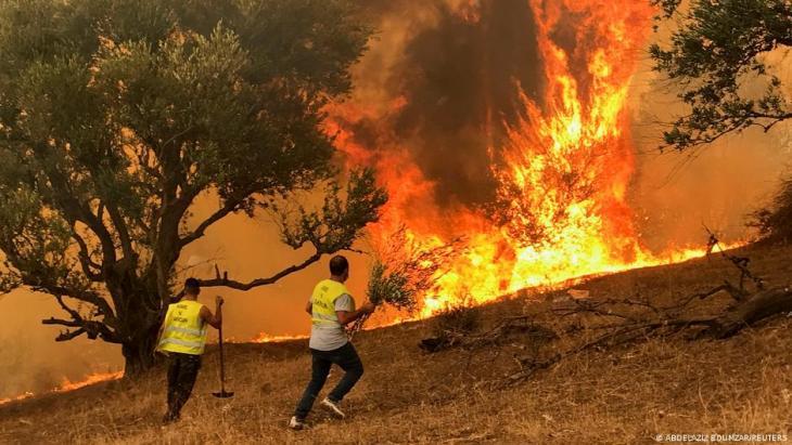حرائق غير مسبوقة ضربت عدة أجزاء من الجزائر Unwetter extrem weltweit Algerien Foto Reuters