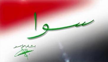 حملة سوا المناصرة للأسد على فيسبوك. Quelle: Sawa/Facebook