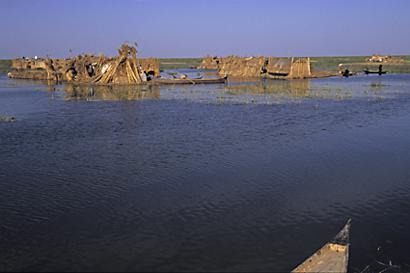 إعادة إحياء الأهوار في العراق