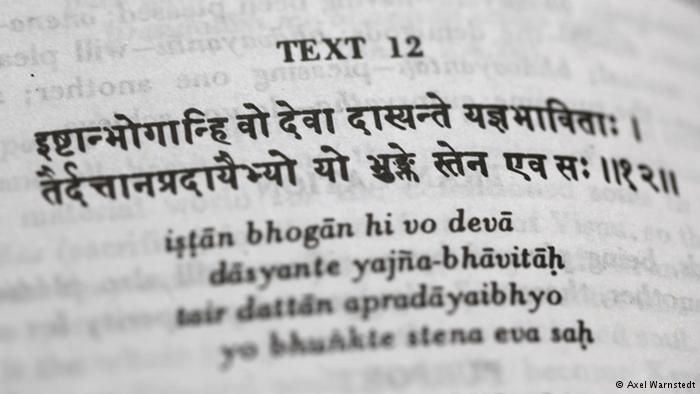 الكتب المقدسة تكلف الإنسان برعاية الطبيعة