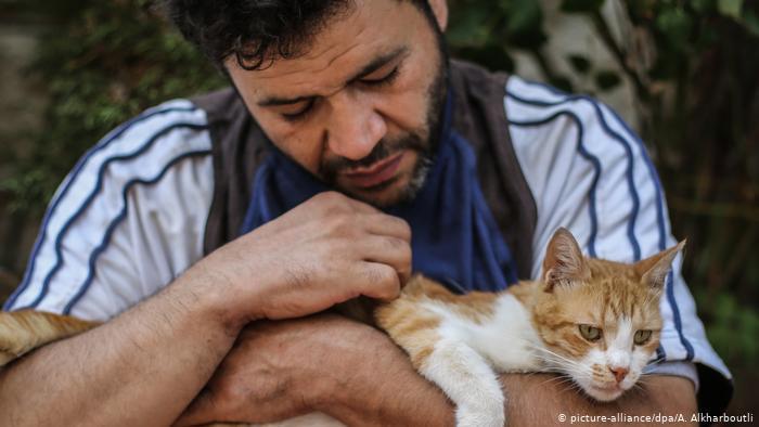 صديق القطط - سوري ينقذ القطط من القذائف ولهيب الحرب بين أنقاض المنازل المدمرة - إدلب ، حلب ، سوريا