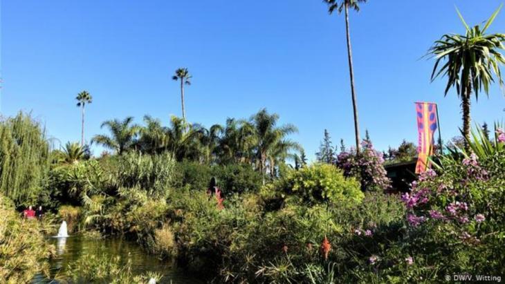 المغرب: جولة مصورة في حديقة أنيما الساحرة في مراكش