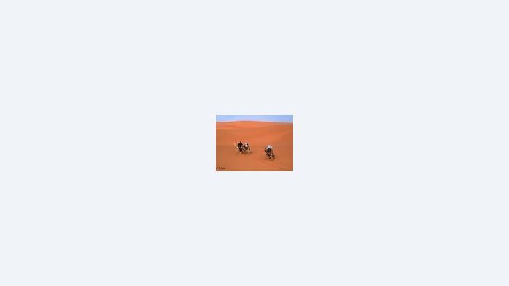 الصحراء ..المستقبل، الصورة: د.ب.ا