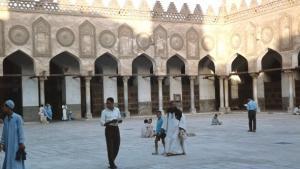 باحة جامعة الأزهر. د ب أ