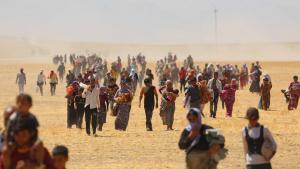 آلاف الإيزيديين هاربون من تنظيم الدولة الإسلامية. Foto: Picture Alliance/AA