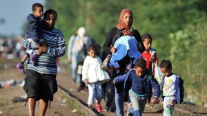 لاجئون سوريون في الحدود الصربية الهنغارية. Foto: Getty Images/AFP/E. Barukcic