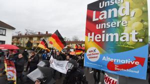 مظاهرة بيغيدا في مدينة ماينتس الألمانية. Foto: picture-alliance/dpa/A. Dedert