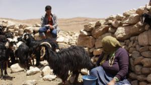 """حقوق الصورة: وصال الشيخ - المغرب: تعيش عائشة مع ابنتها وزوجها وبعض أحفادها على بُعد ساعتين مشياً على الأقدام، إذا أخذنا الطريق من قرية """"بوتغرار""""، جنوب شرق المغرب، إلى الجبال المجاورة لها."""