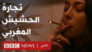 من يحقق الثراء من الحشيش في المغرب. الصورو سكرين شوف من بي بي سي. بر زراعة القنب المخدر مصدر رزق لنحو مليون شخص في المغرب، على الرغم من أن زراعته غير قانونية.