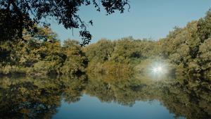"""صورة من فيلم """"طلامِس"""" للمخرج التونسي علاء الدين سليم. (source: unifrance.org)"""