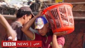 """فيروس كورونا: كيف تحول الوباء إلى """"نعمة"""" للصيادين في العراق؟ الصورة يوتيوب"""