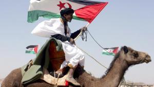 صورة من فعالية احتفالية بمرور 35 عاماً على تأسيس جبهة البوليساريو التي تضغط من أجل تنظيم استفتاء على مصير الصحراء الغربية.