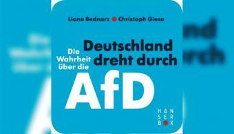 """غلاف كتاب """"هل أصيبت ألمانيا بالجنون. الحقيقة حول حزب البديل من أجل ألمانيا"""""""